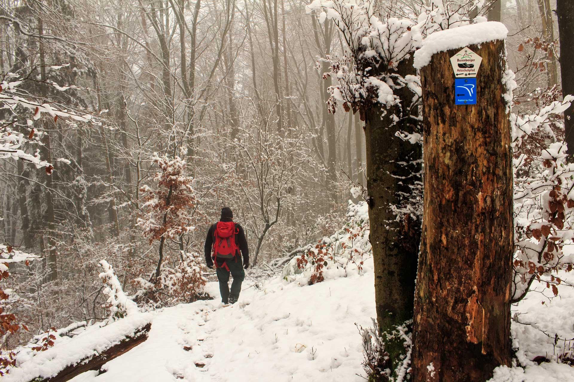 Busenberger Holzschuhpfad Pfalz
