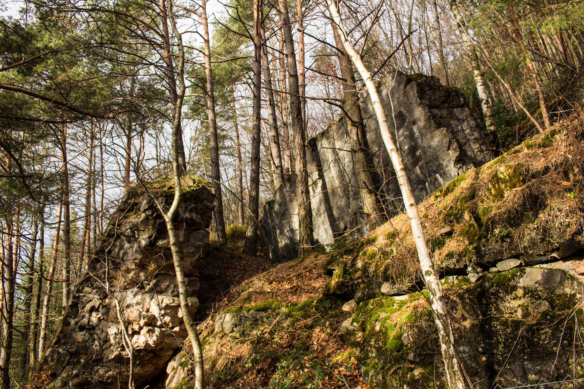 Dornroeschenweg Pfalz